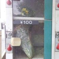 野菜の自動販売機