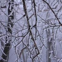 雪の芸術作品
