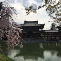 1泊2日 京都の旅