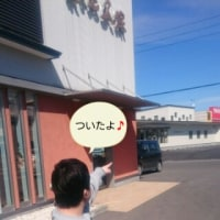 琉(りゅう)くんの休日②