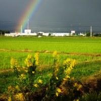 10月26日に見た虹