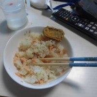 田植えの補植と鮭フレークご飯と味噌汁掛けご飯