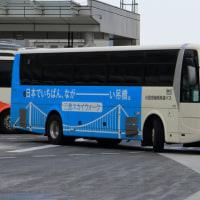 バスタ新宿放浪記 第6夜 ~犬がいねぇ・・・。~