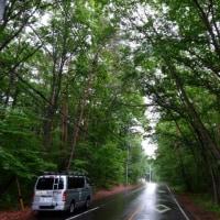 北軽井沢は昼前後雨に