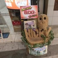 「ふくろうカフェ」とふくろうの写真~友人からのメール~