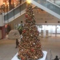 マークイズのクリスマスツリー