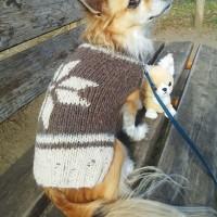 真冬のセーターコレクション