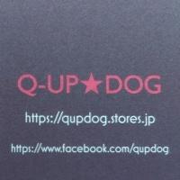 Q-UP★DOGのInstagramはじめました