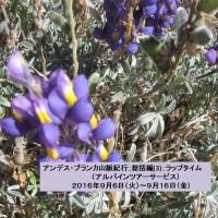 アンデス・ブランカ山脈紀行;総括編(3);ラップタイム