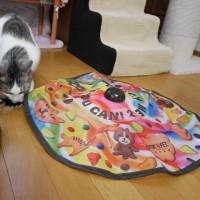 たん吾 5歳の誕生日【動画】