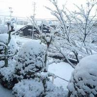 大雪と演劇鑑賞(土井卓美)