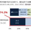 熊本地震-避難所における被災者支援に関する事例等報告書避難所運営マニュアル作成など-1