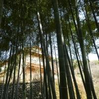 『4月から』 旧吉田茂邸