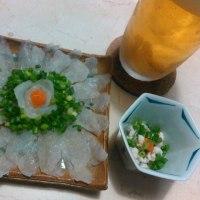 【食】ショウサイフグの刺身