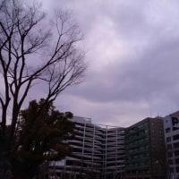 今日の私は818 【2月21日の博多の朝です】