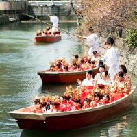 2017 柳川おひな様水上パレード 7(どんこ船との追いかけっこにもへばってしまい )  《福岡県柳川市》