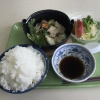 ふじ味-水炊き