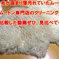 ムートンクリーニングしませんか http://iwai-mouton.jp/index.shtm