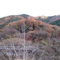 比叡山麓、黄昏カフェ