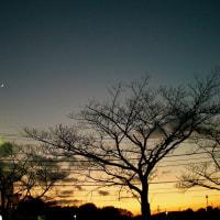 西の夕空に三日月と金星