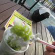 九州博多・日田デブエットツアーその10 『日田天領水の里元気の駅』で休憩と温泉(足湯)とかき氷ソフト