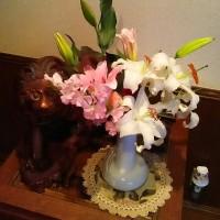 3/26ゆっくりした家族揃った日(⌒‐⌒)