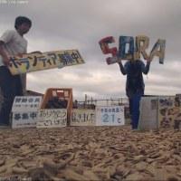 わんにゃん報告Blog-6/11~6/17-