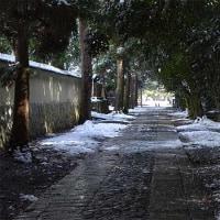 16日の散歩 ( 大徳寺から雲林院への散歩で雪景色?など )