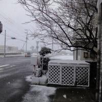 春なのに雪景色