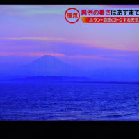 5/22 富士山はあまりアップでないほうがきれい