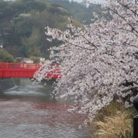 tsuka散歩(鷹取山)