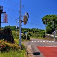 中井町散歩