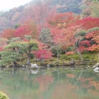 「京都の秋」を思い出す。