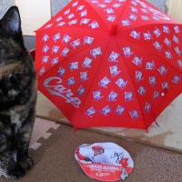 赤い傘とハナッコさん