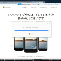 Google Chrome ������
