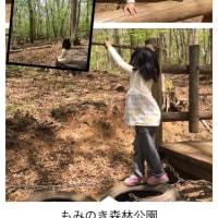 もみのき森林公園