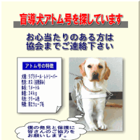 盲導犬アトム号の真実