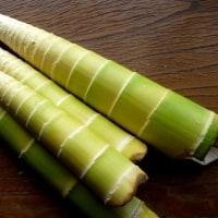 真竹をどうする?
