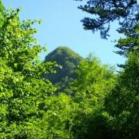 思わぬことで「簾舞学びの森」を歩く