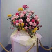 第19回国際バラとガーデニングショーに行きました。