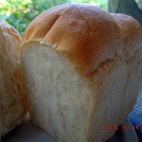 丸藤のすべて手づくりのパン
