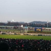 第36回ジャパンカップ