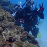 沖縄の思い出