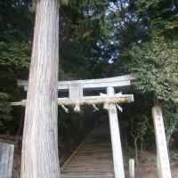 走田神社前の鳥居(川をたどれば湯谷川編)