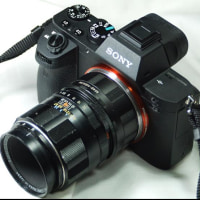 ����559�¡�super-macro-Takumar 50mm F4���ޥ�������ᷯ