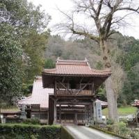 匹見の龍光山善正寺
