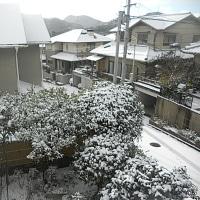 今年一番の雪景色