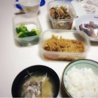 Todays dinner