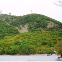 赤城山レンゲツツジと最後のシロヤシオ