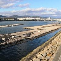 天満川に浮かぶ牡蠣筏